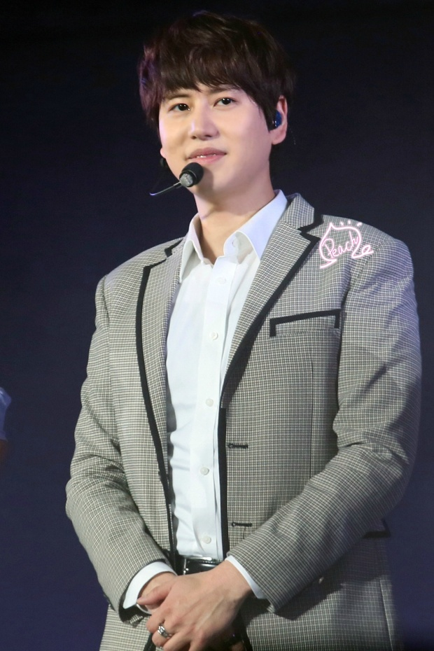 141122_ss6_beijing_kyuhyun (1)